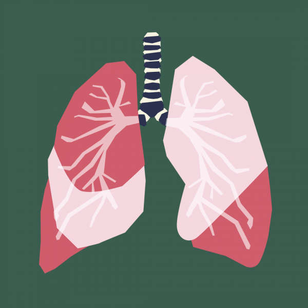 The Lowdown on Detoxification - The Lungs